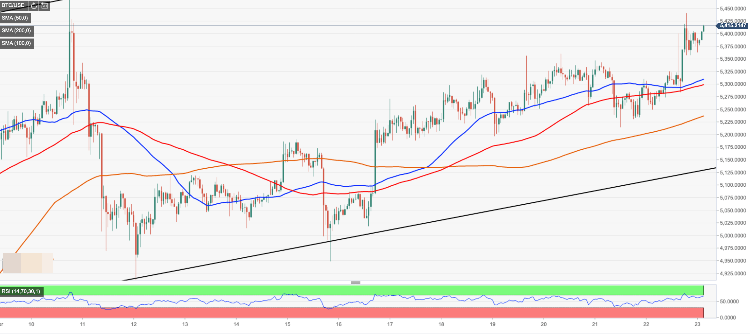 Bitcoin price analysis - BTC/USD defies bearish sentiments amid record volatility growth